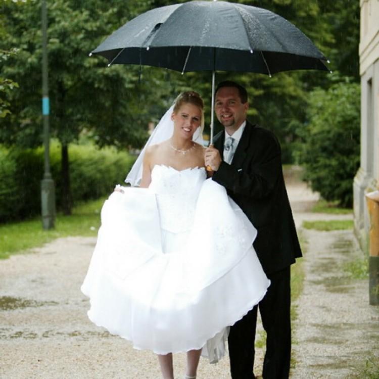Wedding #1184