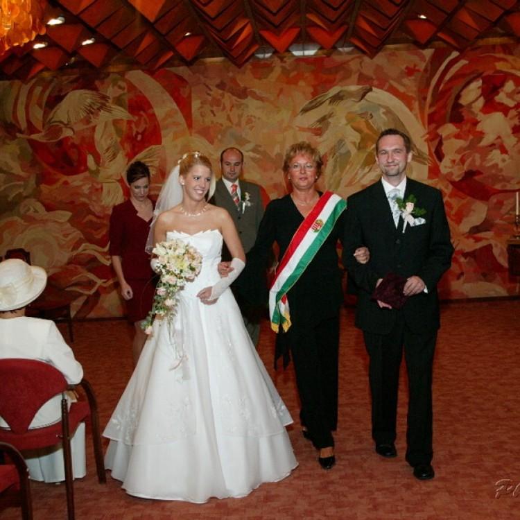 Wedding #1187