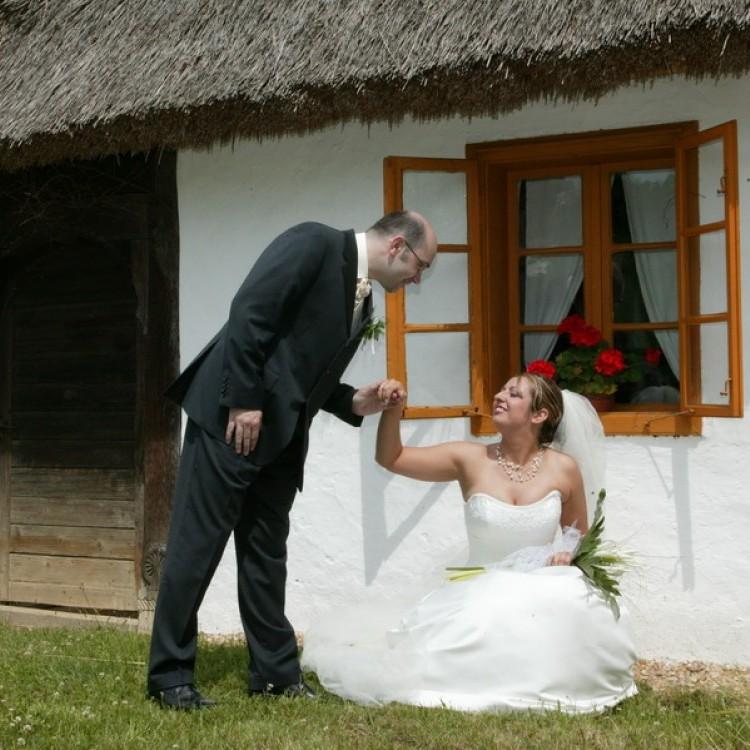 Wedding #1199