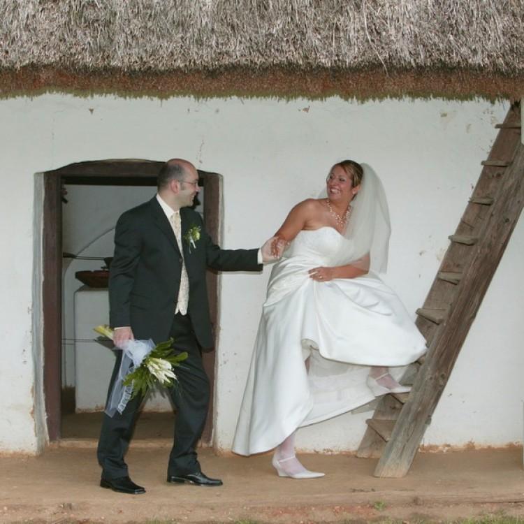 Wedding #1202