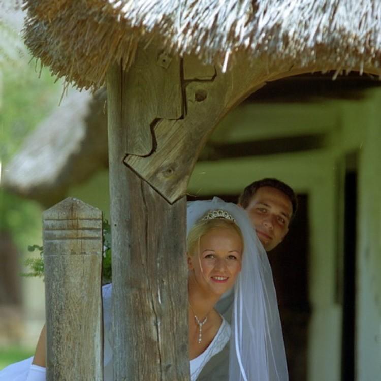 Wedding #1216
