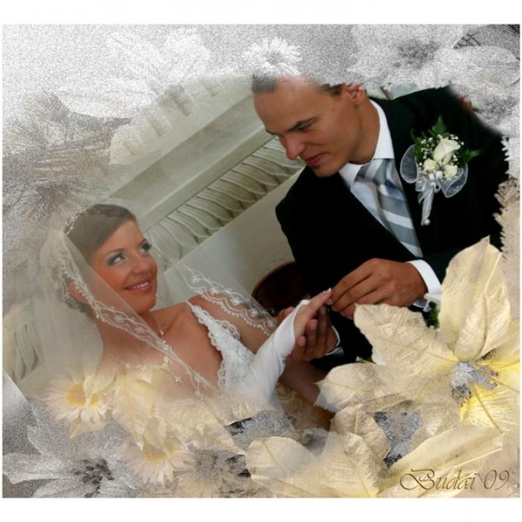 Wedding #1234