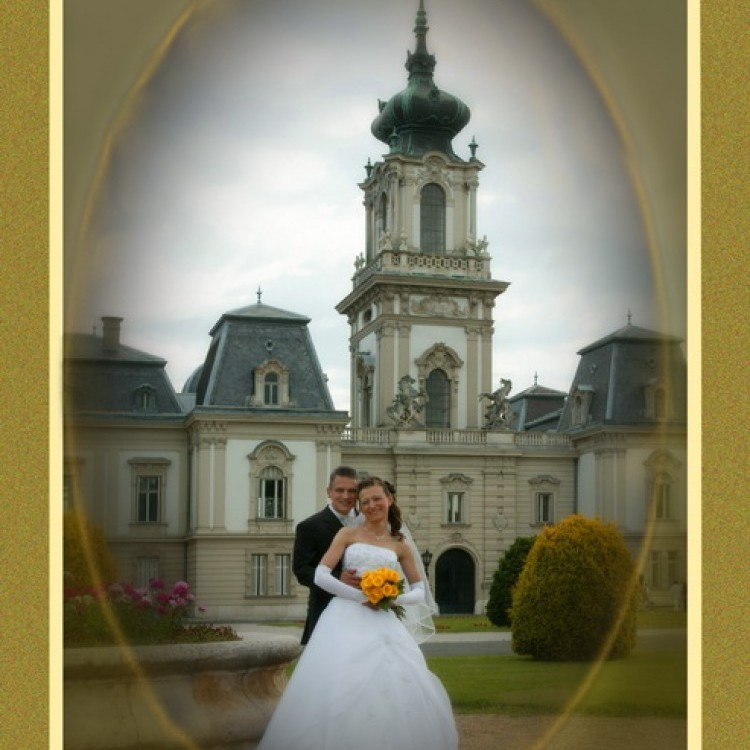 Wedding #1249
