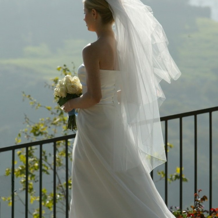 Wedding #1250