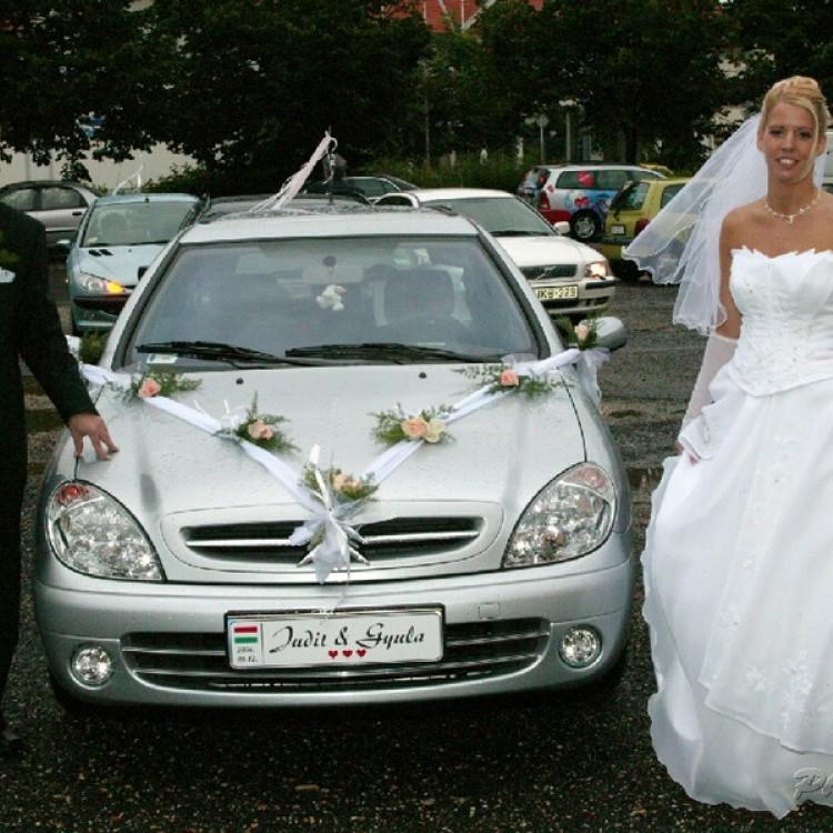 Wedding #1255