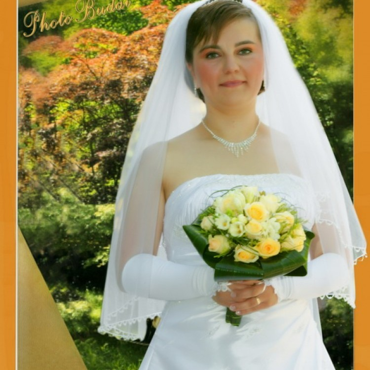 Wedding #1274