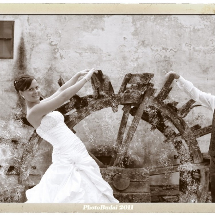 Wedding #1284