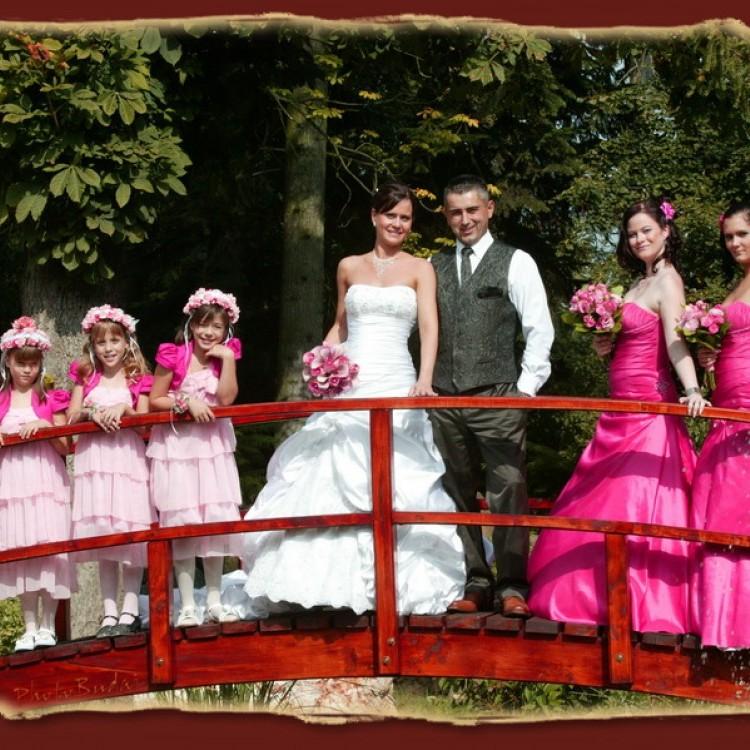 Wedding #1286