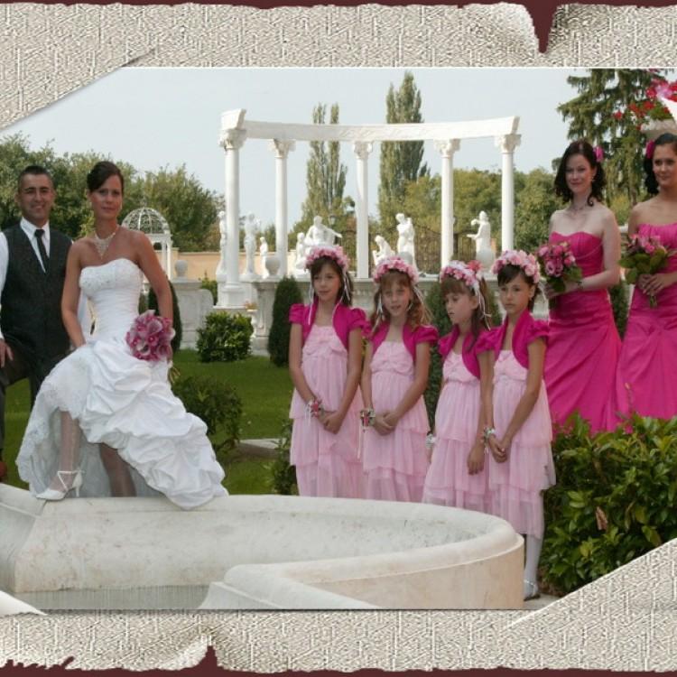 Wedding #1287