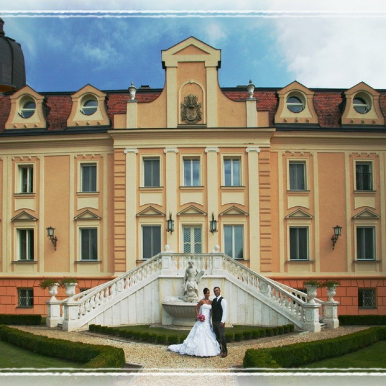 Wedding #1288