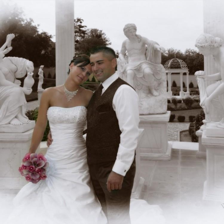 Wedding #1289