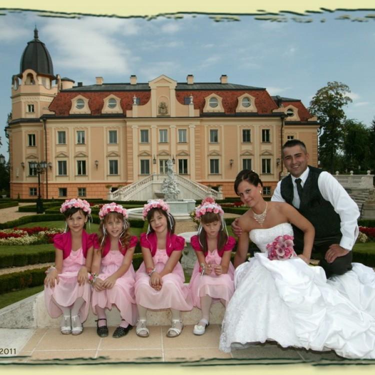 Wedding #1290