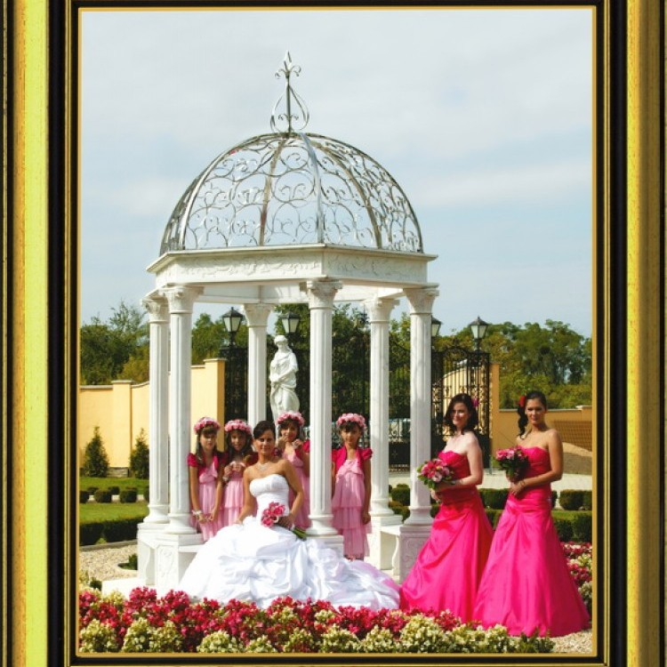 Wedding #1298