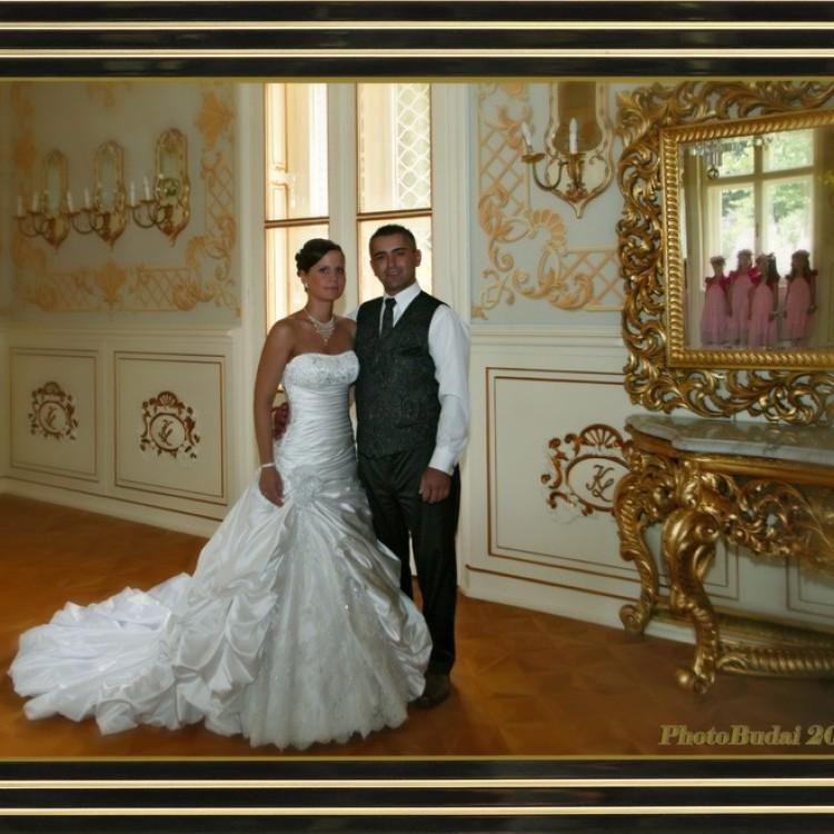 Wedding #1299