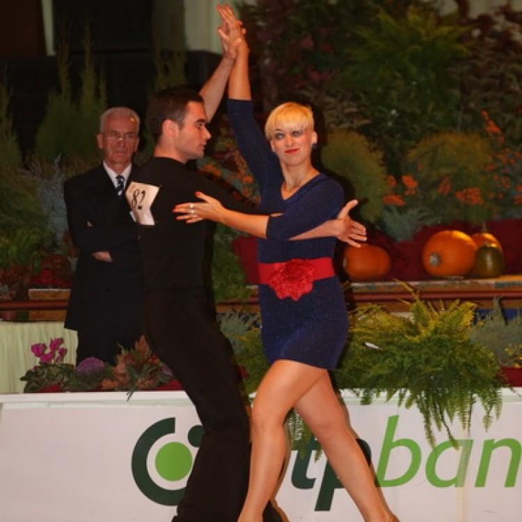 ISIS Dance OTP Kupa 2013 #3376