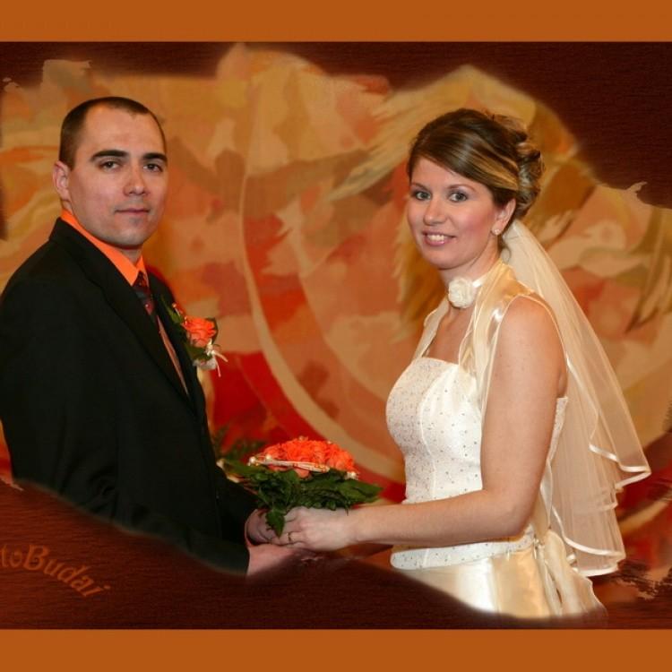 Wedding #343