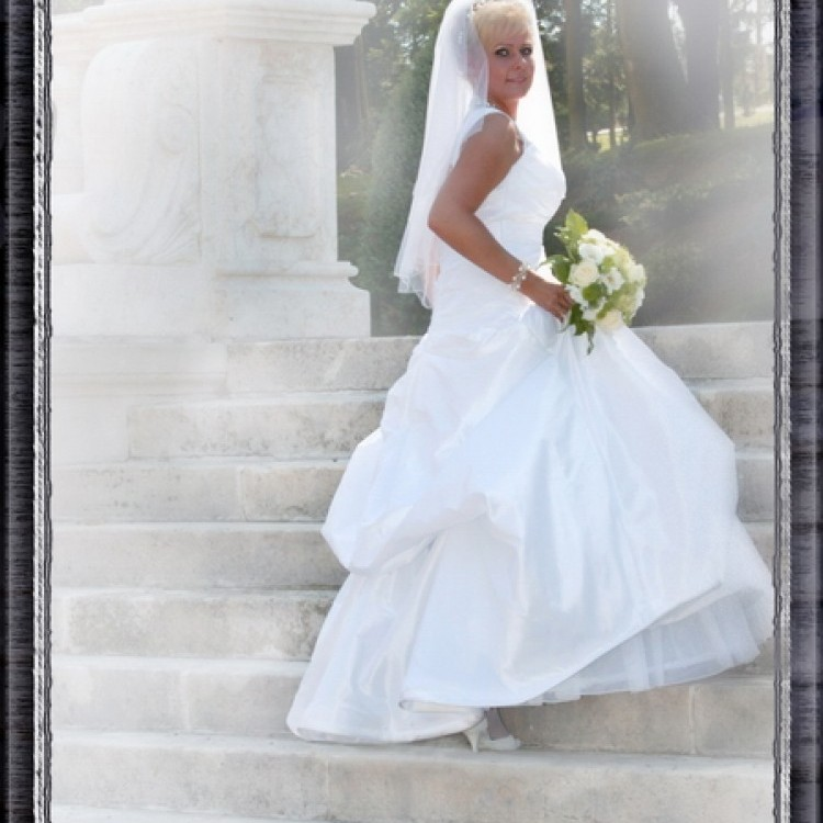 Wedding #347