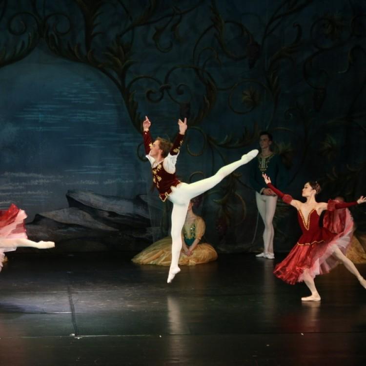 HATTYÚK TAVA  Kijev  City balett #3979