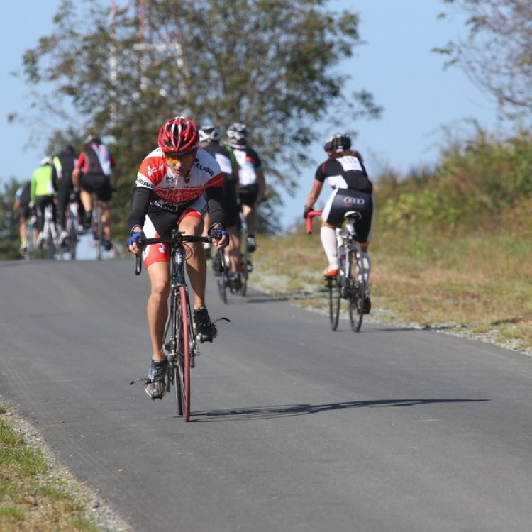 CYCLING AT-HU Epcos Cup 2014 #4616