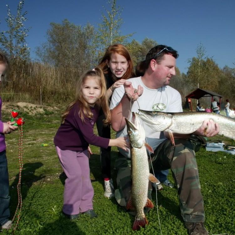 Fishfarm Zsennye #799