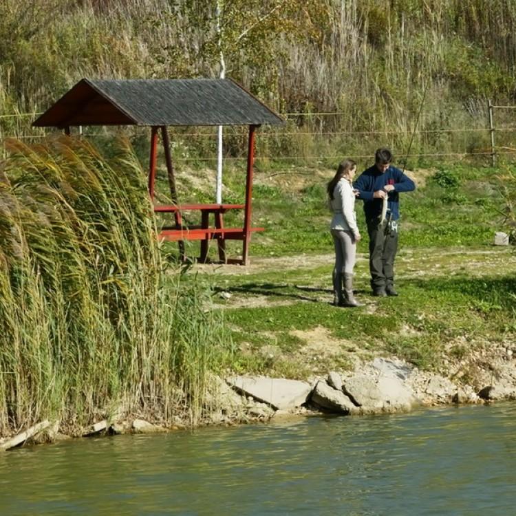 Fishfarm Zsennye #810