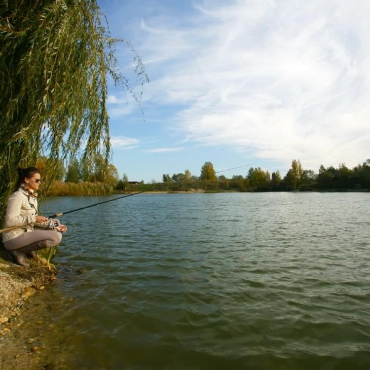 Fishfarm Zsennye #813