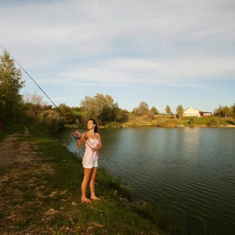 Fishfarm Zsennye #819